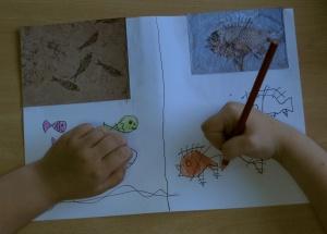 Taller Cuaderno de viaje de Darwin en la biblioteca de Vallecas. Fósiles.